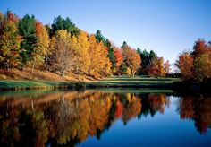 Leaf-Peeping in Vermont