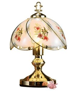 Collections Etc Hummingbird Desk Touch Lamp -- Check this awesome product by going to the link at the image. (This is an affiliate link) Giraffe Lamp, Novelty Lamps, Walmart, Victorian Lamps, Collections Etc, Touch Lamp, Led Desk Lamp, Table Lamps, Bedroom Night Stands