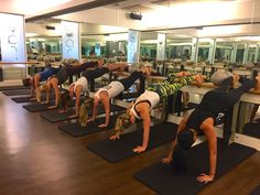 New Fly Class Arms & Abs. FlyBarre has just intro'd a new Arms & Abs, perfect for those looking to ...