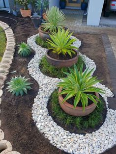 20 DIY garden decor ideas - - Looking for decorating ideas for the garden? Check these 20 DIY garden decor ideas that will surely increase the beauty of your garden. Hunting is more your hobby DIY garden decor idea details. Big Potted Plants, Outdoor Plants, Outdoor Gardens, Small Gardens, Modern Gardens, Outdoor Garden Decor, Diy Garden Decor, Rock Garden Design, Small Garden Design