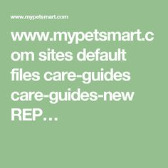 www.mypetsmart.com sites default files care-guides care-guides-new REP…