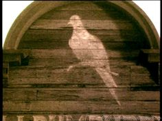 Movie ScreenShots: Lonesome Dove (1989)