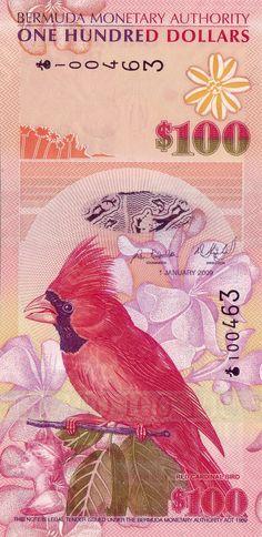 Bermuda 100 dollars