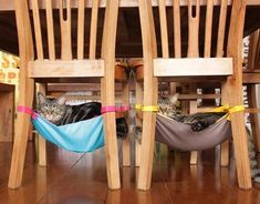 DIY Cat Stuff... Homemade Cat Hammocks for under the kitchen chairs! :) Free Cat Tree Plans! Pet furniture you cam make! #CatFondo #cathousehomemade