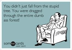 You didn't just fall from the stupid tree. You were dragged through the entire dumb ass forest!