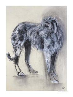 Irish Wolfhound Premium Giclee Print