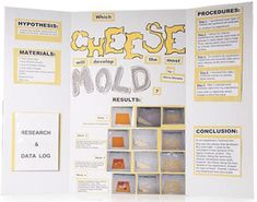5 Easy Steps to Put Together a Science Fair Project Board on VolunteerSpot.com