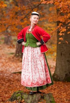 Toarpsdräkt: april 2012. Västergötland, Sweden. Swedish Fashion, Folk Fashion, Folklore, Coloured People, Swedish Design, Everyday Dresses, Folk Costume, Traditional Dresses, Vintage Outfits