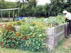 Hochbeet als erster Kompost.