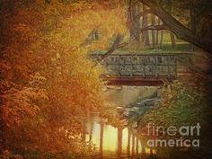 Bridge On Cayuga Creek by Lianne Schneider #westernnewyork #cayugacreek #lianneschneider