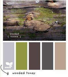 *** Design seeds Wooded Tones. Paint colors idea for the basement: green couch, purple in accent chair, beige carpet & grey in stone tile.
