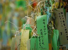 Tanabata Matsuri wishes
