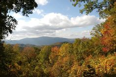 The Smoky Mountains are beautiful anytime of year!!!