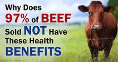 To help achieve optimal health, make sure you eat grass-fed and grass-finished beef. http://articles.mercola.com/sites/articles/archive/2014/12/21/grass-fed-beef-production.aspx