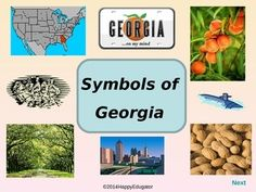 Georgia State Facts and Symbols Class Decor, Government, Geography ...
