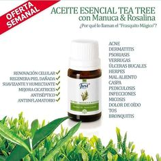 Tea Tree, Shampoo, Personal Care, Bottle, Warts, Dandruff, Self Care