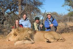 ~ Please sign this Petition to Stop Lion Canned Hunting in South Africa ~ Shocking Video - An investigation into the growing South African industry of hunting lions bred in captivity has reignited a long-running controversy among hunters, captive breeders and animal rights advocates.