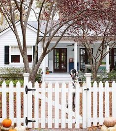 8 Wonderful Cool Tips: Cedar Fence Raised Beds fence gate pergola.Front Yard Fence Spanish picket fence on wall.Picket Fence Storage Sheds. Backyard Privacy, Backyard Fences, Fenced In Yard, Backyard Ideas, Patio Ideas, Yard Fencing, Fence Garden, Porch Ideas, Front Fence