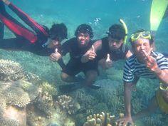 Berwisata di Karimunjawa   Wisata Indonesia - Seputar informasi tempat wisata Indonesia hanya di travellerindonesia.blogspot.com