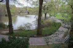 Central Park Visiting Nyc, Central Park, New York City, Plants, Pictures, Beautiful, Photos, New York, Cental Park
