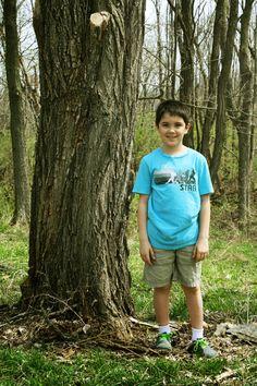 Apologia Botany - Lesson 9 - Trees