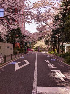 """日本 on """"Spring in Japan Aesthetic Japan, Japanese Aesthetic, City Aesthetic, Travel Aesthetic, Japanese Style, Japanese Fashion, Japanese Food, Japanese Art, Japon Tokyo"""