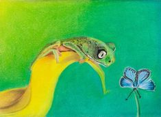 This lovely little creature got me using colors in my artwork, something I rarely did before. If you buy this work, 10 % of my earnings go to nature protection organisation WorldWideFund. I used soft pastel cray on regular sketch paper. Karma Chameleon, Sketch Paper, Reptiles And Amphibians, Good Cause, Pet Birds, Creatures, Lizards, Artwork, Prints