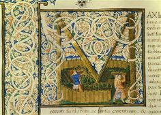 Initial M, from Pliny's Natural History. Vol. XX. Italy, 1460 | Livre : Histoire Naturelle de Pline l'Ancien, volume XX. Vers 1460.