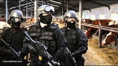 Militarized USDA and EPA using SWAT Teams to Terrorize Innocent People Including Lemon Growers and Small Farmers