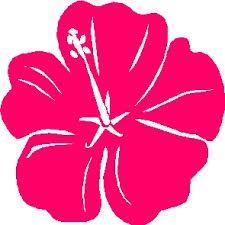 Image result for kleuren hawaii