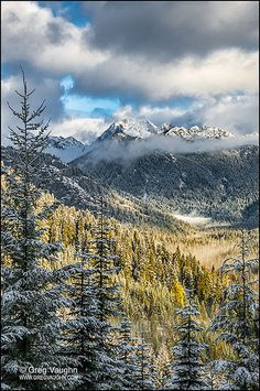 Chikamin Ridge, Okanogan-Wenatchee National Forest, Washington, Cascade Mountains, WA