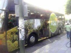 [FOTO] @AsuncionMuni presentó buses de turismo interno #780am vía @blasito_cuenca