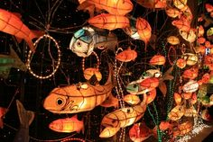 Seondeung Festival takes place on Seondeung Street, with lights and lanterns in the shape of Sancheoneo (mountain trout) that illuminate the street with a soft glow. Fish Lanterns, Bird Puppet, Ocean Projects, Chinese Paper Lanterns, Japanese Festival, Research Images, Vintage Lanterns, Murals Street Art, Japanese Aesthetic