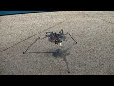 A New Design of Three-Legged Robot