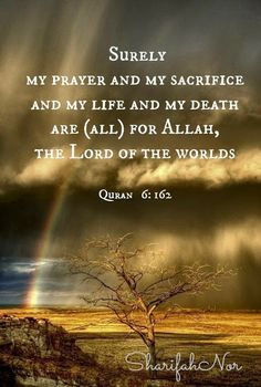 """""""Surely my prayer and my sacrifice and my life and my death are (all) for Allah, the Lord of the Worlds. Islamic Teachings, Islamic Qoutes, Religious Quotes, Allah Quotes, Quran Quotes, Hindi Quotes, Sufi Quotes, Allah God, Noble Quran"""