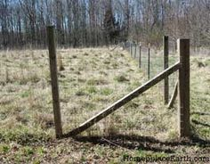 It's spring! Time to think of installing permanent fencing.