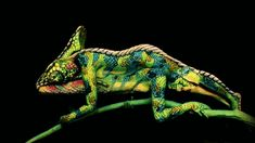 chameleon - body painting optical illusion - Johannes Stoetter Art