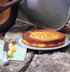 Mirabellen-Käsekuchen mit Tonkabohne