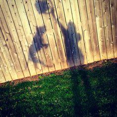 MrQ jumpin - Shadow Pic
