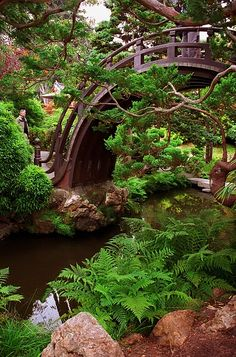 "San Francisco - Golden Gate Park ""Japanese Tea Garden - Half Moon Bridge"" 