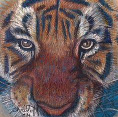 """Daily Paintworks - """"Tiger Animal, Pastel, 5 x 5 $..."""" by emily Christoff-Flowers"""