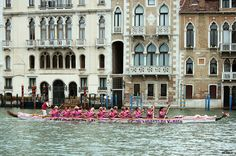 Pink Lioness in Venice by danilo.rizzetto, via Flickr