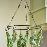Time to start growing herbs