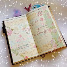 midori travellers notebook