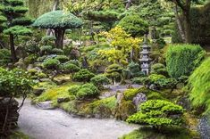 You may have always admired the simplicity of a Japanese Garden landscape design, and wondered how such clean lines and sparse vegetation exudes such elegance and complexity to the visitor of such a…MoreMore  #JapaneseGarden