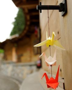 Origami peace cranes hang at The Japanese American Exclusion Memorial in Pritchard Park on Bainbridge Island Washington. Photo by Darcy Kiefel. On March 30 1942 227 Americans of Japanese descent were forcibly removed from their homes and assembled at the Eagledale Ferry Dock on Bainbridge Island Washingtonthe first of more than 100000 Japanese Americans who would be unjustly interned during World War II. For years Japanese Americans and island civic leaders worked to create a memorial to the…