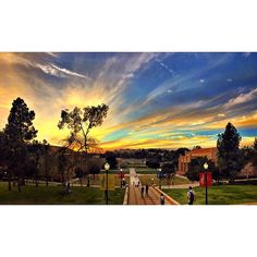 A Blue & Gold sunset to match our Blue & Gold spirit! #SceneatUCLA #ucla #sunset #landscape