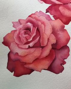Watercolor Tutorial Flowers craft videos Rose Watercolor Tutorial Flowers Blossoms are the primary issues Watercolor Painting Techniques, Watercolour Tutorials, Drawing Techniques, Roses Painting Acrylic, Watercolor Portrait Tutorial, Painting Lessons, Watercolor Paintings, Watercolor Rose, Watercolor Illustration