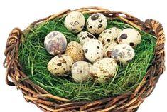 Cura cu Ouă de Prepeliţă – Pentru 100 de Boli Natural Healing, Home Remedies, Health Fitness, Eggs, Nicu, Drink, Medicine, Natural Remedies, Silhouette