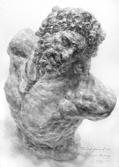 drawing torso